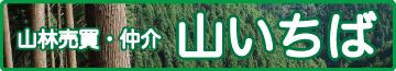 山いちばの山林売買・仲介