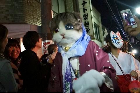 一条百鬼夜行2014 ネコの妖怪