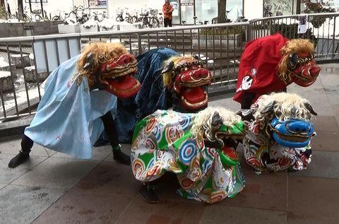 京・獅子舞プロジェクトの獅子舞