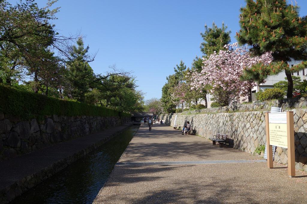 京都 堀川の遊歩道