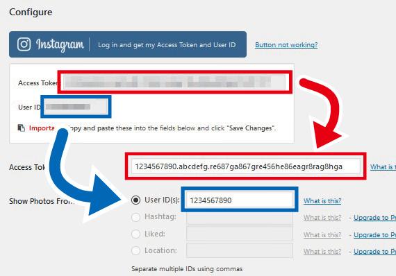Instagram feed アクセストークンとユーザーID入力
