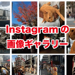 Instagram 画像ギャラリー