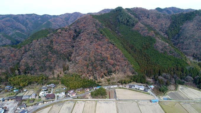 山いちば 山林物件案内画像