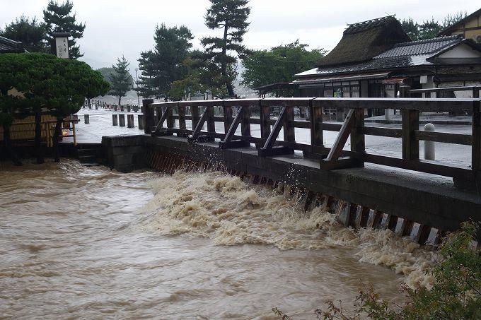 増水した桂川 中の島